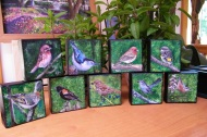 """""""Backyard Bird Collection"""" each 4""""x4"""" acrylic on canvas. Copyright 2018 Kate Zamarchi, all rights reserved."""
