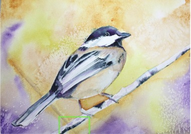 """""""Chickadee"""" Copyright 2018 Kate Zamarchi. All rights reserved."""