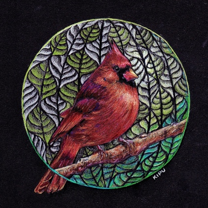 """""""Cardinal"""" color pencil on black paper. Copyright 2018 Kate Zamarchi. All rights reserved."""