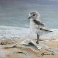 """""""Plover Teen"""" 8""""x8"""" acrylic on canvas. Copyright 2018 Kate Zamarchi. All rights reserved."""