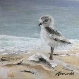 """Plover Teen"" 8""x8"" acrylic on canvas. Copyright 2018 Kate Zamarchi. All rights reserved."