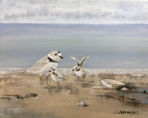 """""""Piping Plover Family"""" 16"""" x 20"""" acrylic on canvas. Copyright 2018 Kate Zamarchi. All rights reserved."""