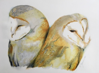 """""""Owl Love"""" Copyright 2018 Kate Zamarchi. All rights reserved."""