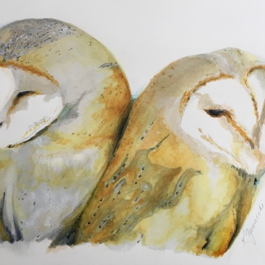 """Owl Love"" Copyright 2018 Kate Zamarchi. All rights reserved."
