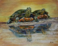 """""""Turtle Reflections"""" 11""""x14"""" acrylic on canvas. Copyright 2018 Kate Zamarchi. All rights reserved."""