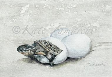 """""""Baby Blandings"""" 4.5 x 6.5"""" watercolor"""