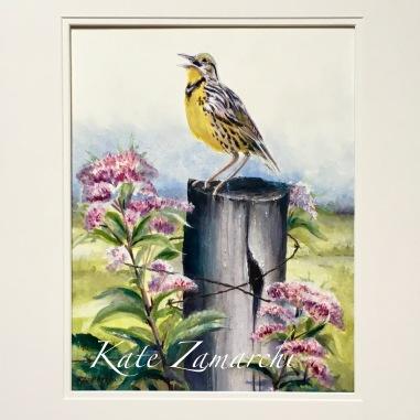 """watercolor 11x14"""""""